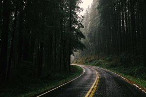 Olympic National Park beste Reisezeit